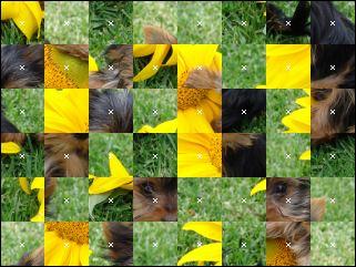 Biélorusse puzzle №102698