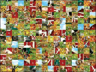 Biélorusse puzzle №108282