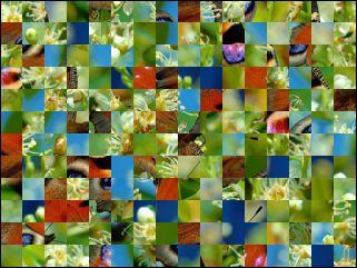 Biélorusse puzzle №115679