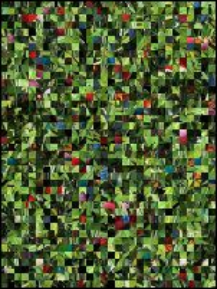 Puzzle Biélorusse №127057