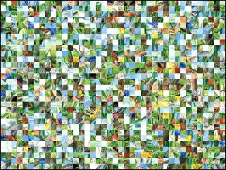 Puzzle Biélorusse №156014