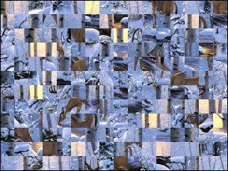 Biélorusse puzzle №16088