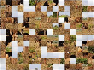 Biélorusse puzzle №164834