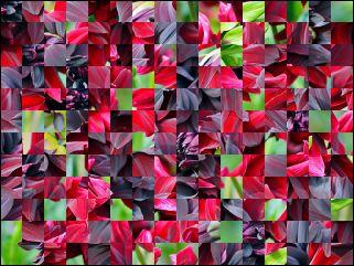 Biélorusse puzzle №170113