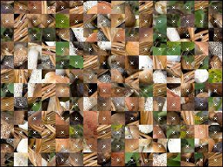 Biélorusse puzzle №188685