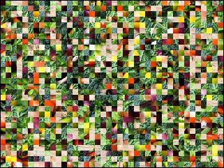 Biélorusse puzzle №195280