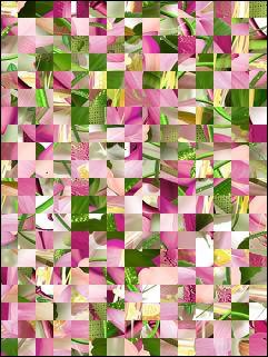 Biélorusse puzzle №201600