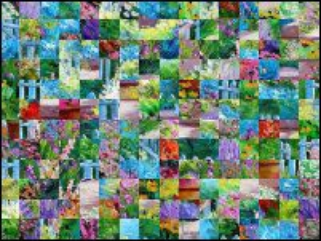 Biélorusse puzzle №203999