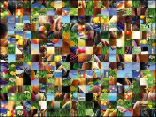 Biélorusse puzzle №206318