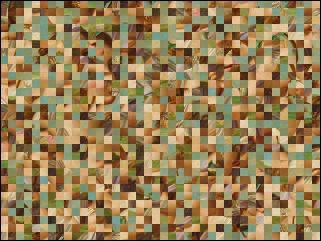 Biélorusse puzzle №20763