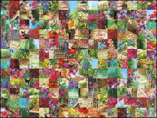Biélorusse puzzle №22788