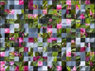 Biélorusse puzzle №30469