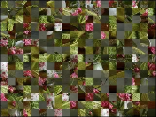 Biélorusse puzzle №31825