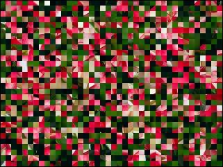Biélorusse puzzle №39887