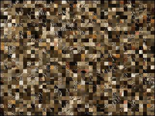 Biélorusse puzzle №64294
