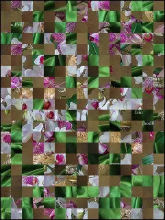 Biélorusse puzzle №88241