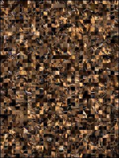 Puzzle Biélorusse №92019