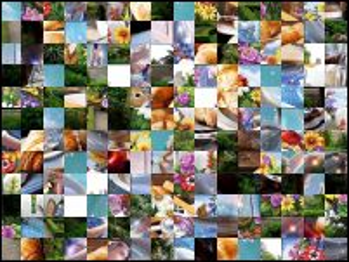 Multi-puzzle №157902
