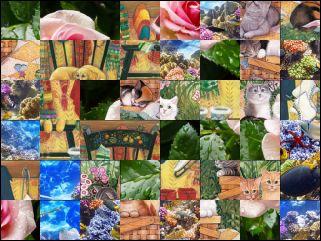 Multi-puzzle №171762