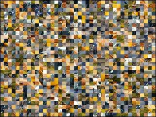 Multi-puzzle №197328