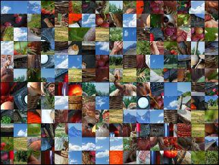 Multi-puzzle №198180