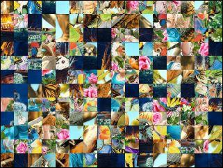Multi-puzzle №81546