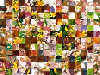Multi-puzzle №85243