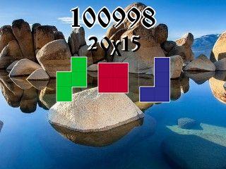 Puzzle полимино №100998