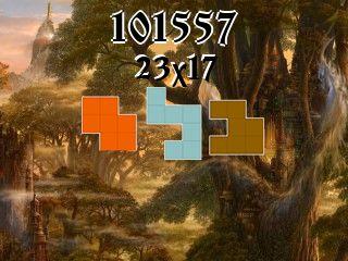 Puzzle полимино №101557