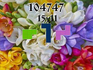 Puzzle полимино №104747