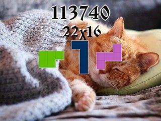 Puzzle полимино №113740