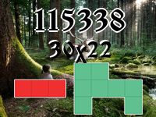 Puzzle полимино №115338