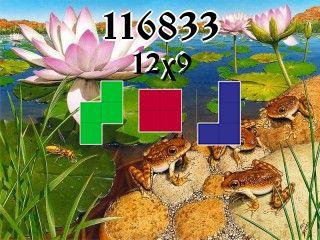 Puzzle полимино №116833