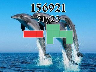 Puzzle полимино №156921