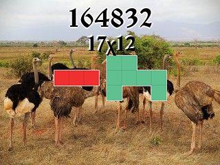 Puzzle полимино №164832