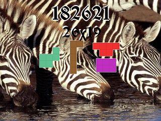 Puzzle полимино №182621