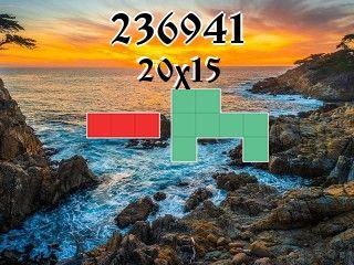 Puzzle полимино №236941