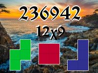 Puzzle полимино №236942
