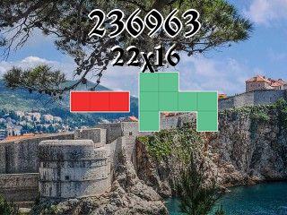 Puzzle полимино №236963