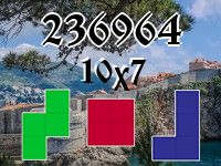 Puzzle полимино №236964
