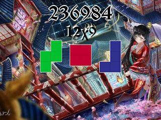 Puzzle полимино №236984