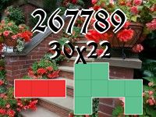 Puzzle Polyomino №267789