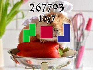 Puzzle Polyomino №267793