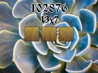 Puzzle №102876