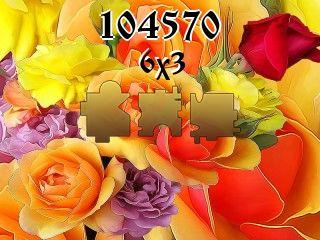 Puzzle №104570