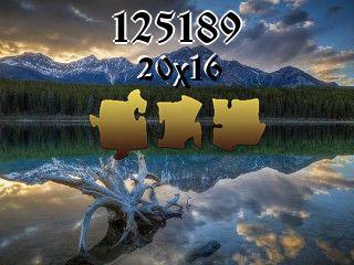 Puzzle №125189