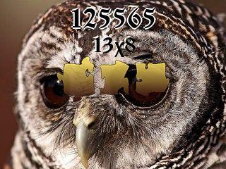 Puzzle №125565
