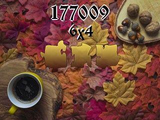 Puzzle №177009
