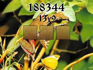 Puzzle №188344