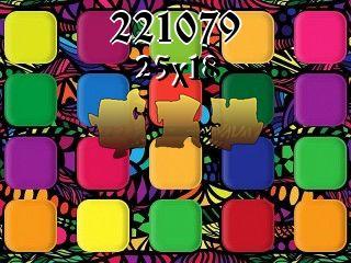 Puzzle №221079